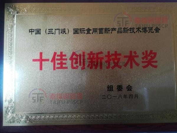 十佳创新技术奖